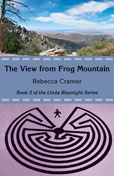 The View from Frog Mountain cover image